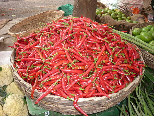The etymology of chillies The name chile pepper comes from the Nahuatl chilli. There doesn't seem to be any link between the name and the modern country of Chile in South America. The etymology of the latter is still under discussion (see here). - Photo by Sivahari